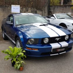 La Ford Mustang de Starge Location au salon Pimp Ta Noce